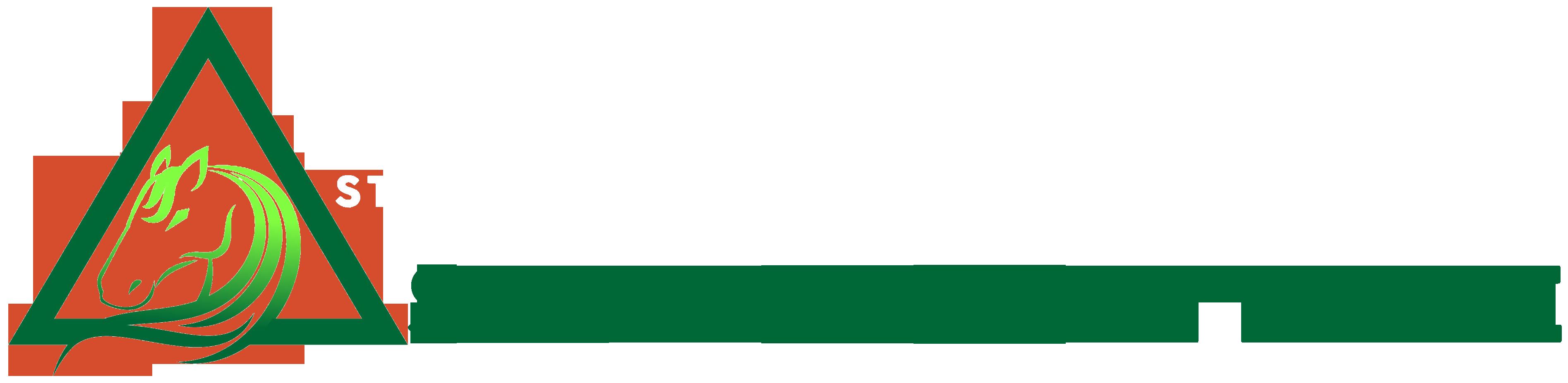Stratagem Trade